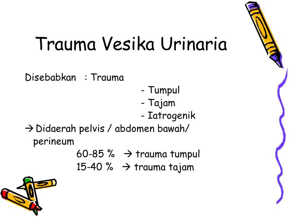 Trauma Vesika Urinaria Disebabkan : Trauma - Tumpul - Tajam - Iatrogenik  Didaerah pelvis / abdomen bawah/ perineum 60-85 %  trauma tumpul 15-40 % 