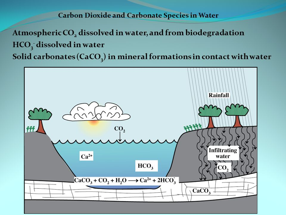 Atmospheric CO 2 dissolved in water, and from biodegradation HCO 3 - dissolved in water Solid carbonates (CaCO 3 ) in mineral formations in contact with water Carbon Dioxide and Carbonate Species in Water