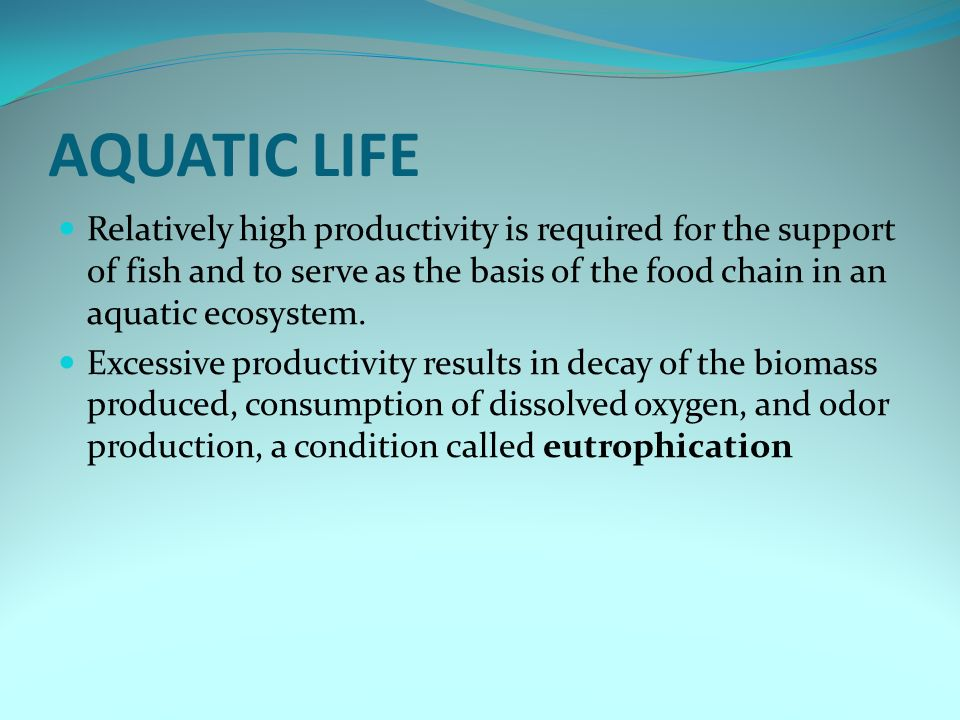 AQUATIC LIFE Relatively high productivity is required for the support of fish and to serve as the basis of the food chain in an aquatic ecosystem. Exc