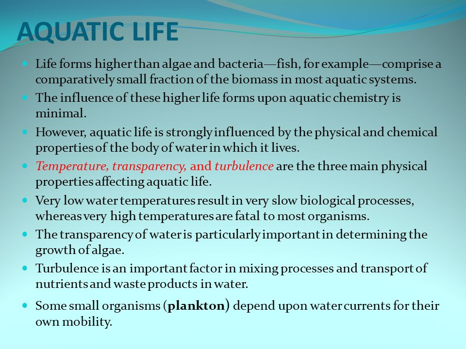 AQUATIC LIFE Life forms higher than algae and bacteria—fish, for example—comprise a comparatively small fraction of the biomass in most aquatic systems.