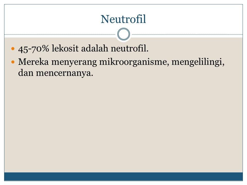 Neutrofil 45-70% lekosit adalah neutrofil. Mereka menyerang mikroorganisme, mengelilingi, dan mencernanya.