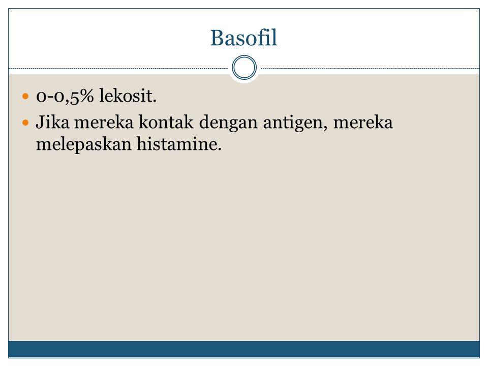 Basofil 0-0,5% lekosit. Jika mereka kontak dengan antigen, mereka melepaskan histamine.