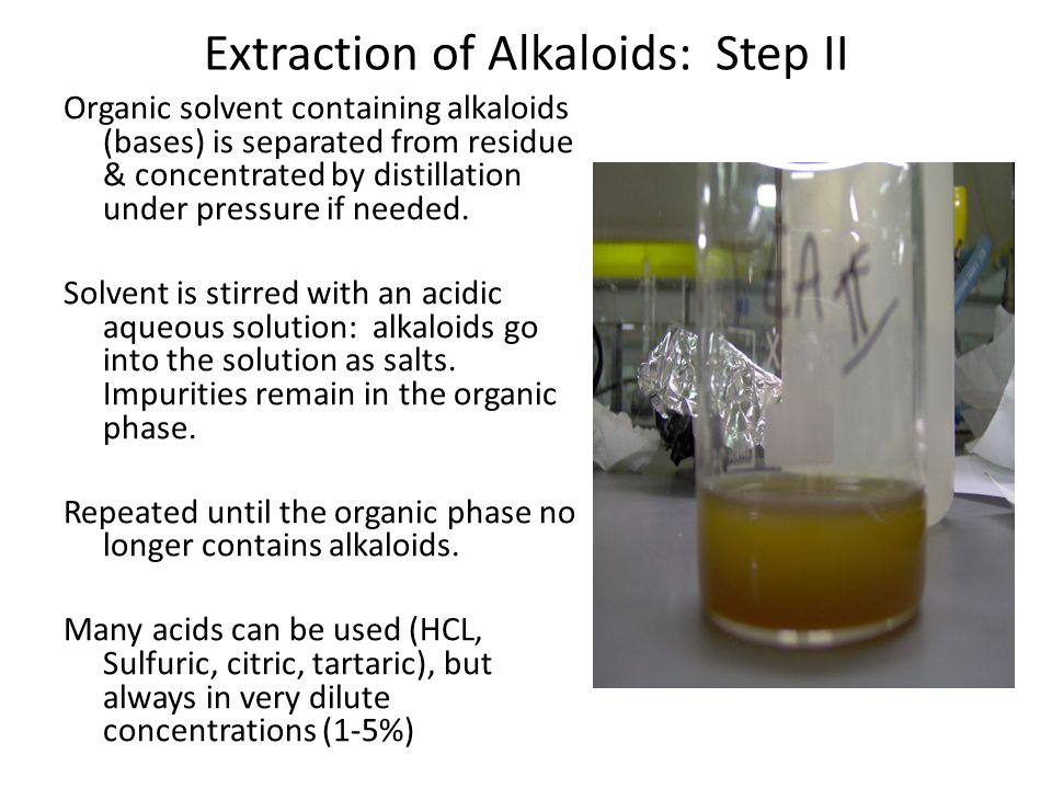 Alkaloid Extraction: Step III Aqueous solution of alkaloid salts is washed with an apolar solvent (hexane) Alkalinized with a base using an organic solvent not miscible with water.