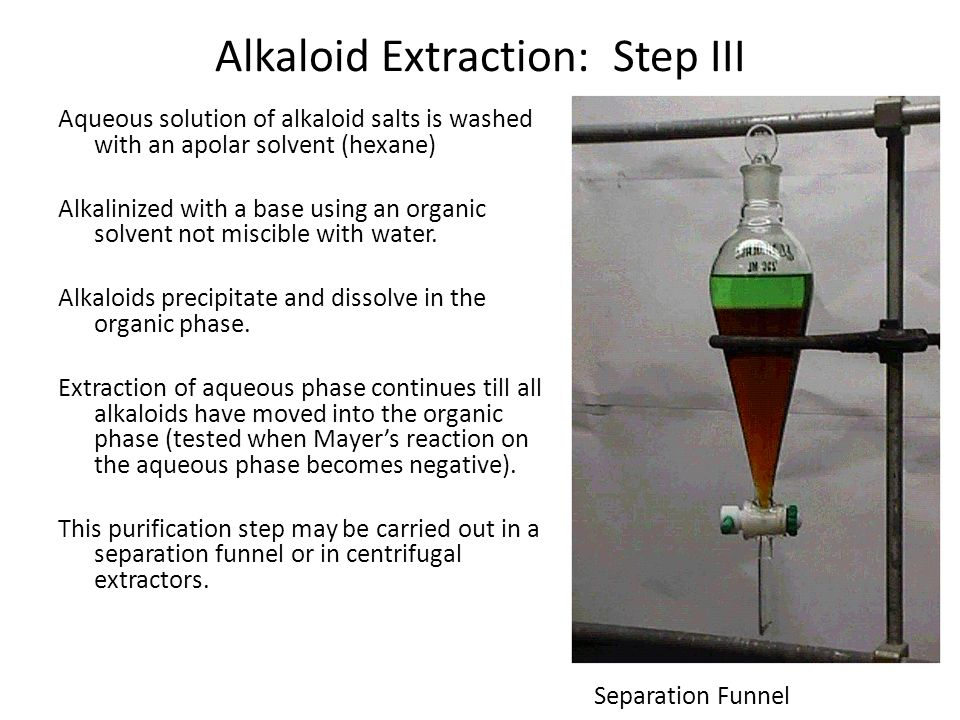 Alkaloid Extraction: Step III Aqueous solution of alkaloid salts is washed with an apolar solvent (hexane) Alkalinized with a base using an organic so