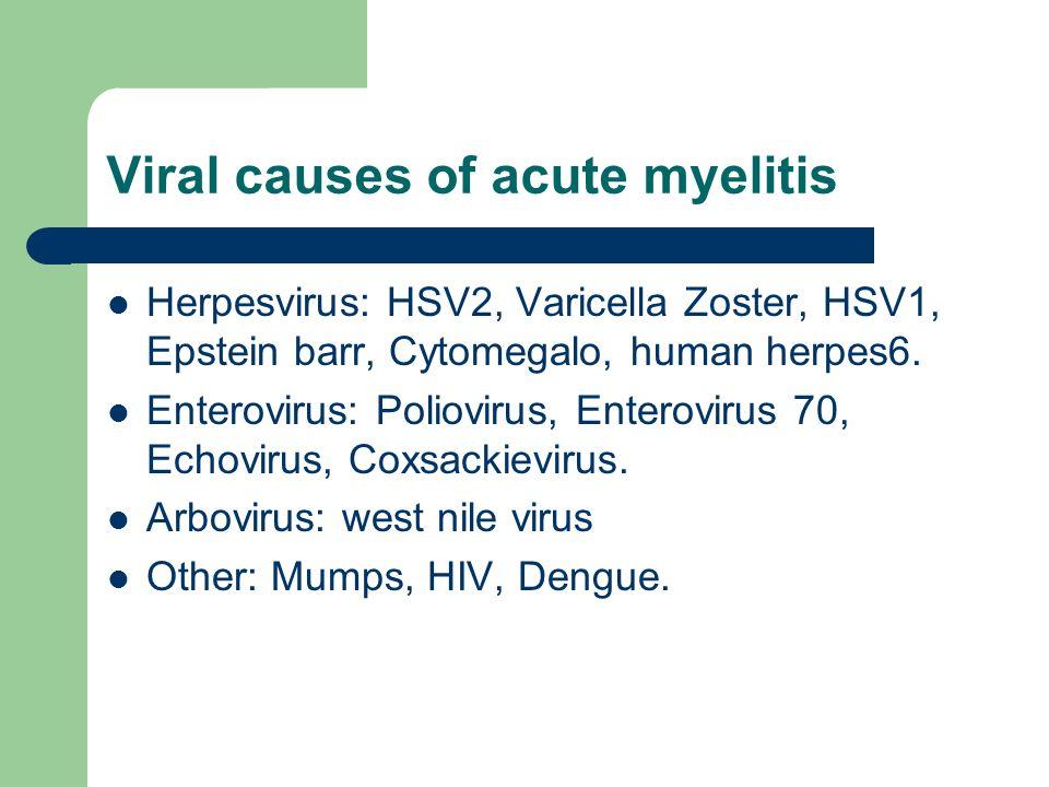 Affinities virus in myelitis Enterovirus  anterior horn or nuclei of the brain stem Herpes zoster  dorsal root ganglion
