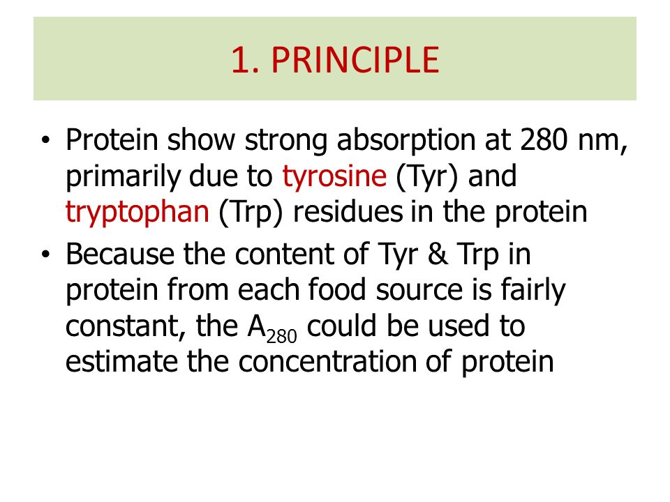 Protein show strong absorption at 280 nm, primarily due to tyrosine (Tyr) and tryptophan (Trp) residues in the protein Because the content of Tyr & Tr