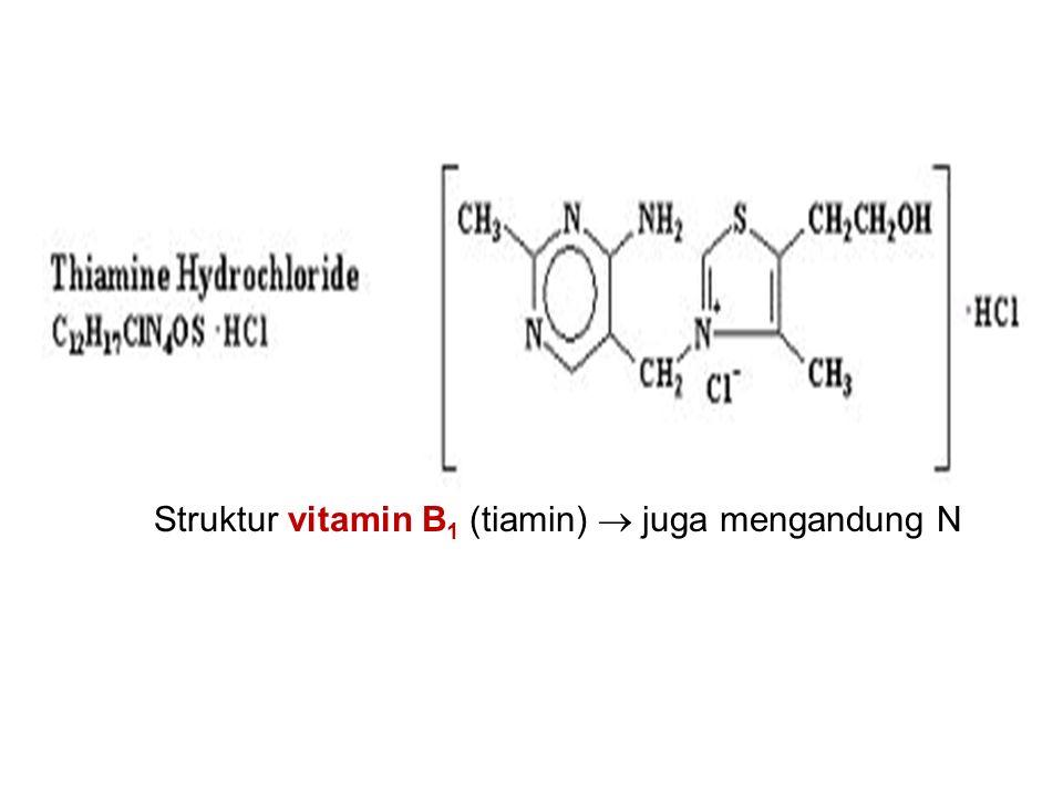 Struktur vitamin B 1 (tiamin)  juga mengandung N