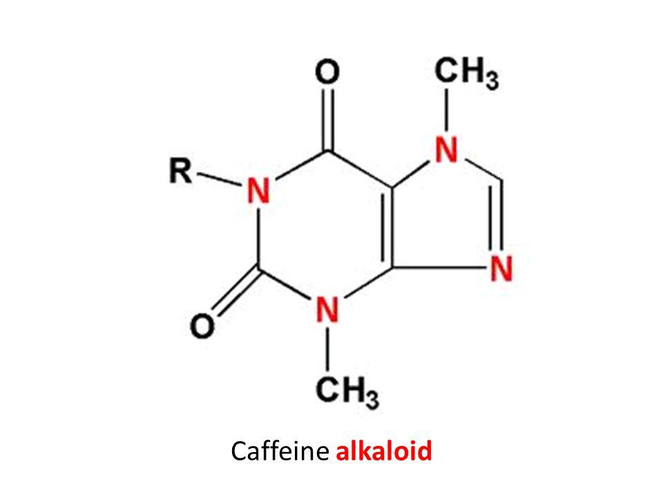 Caffeine alkaloid