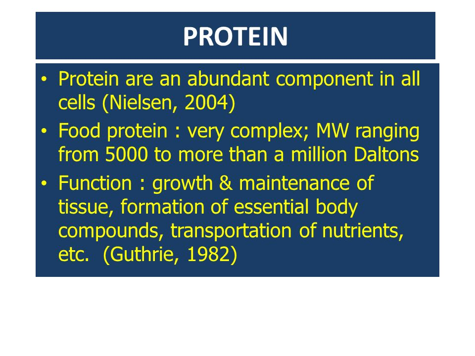 PROTEIN Protein are an abundant component in all cells (Nielsen, 2004) Food protein : very complex; MW ranging from 5000 to more than a million Dalton