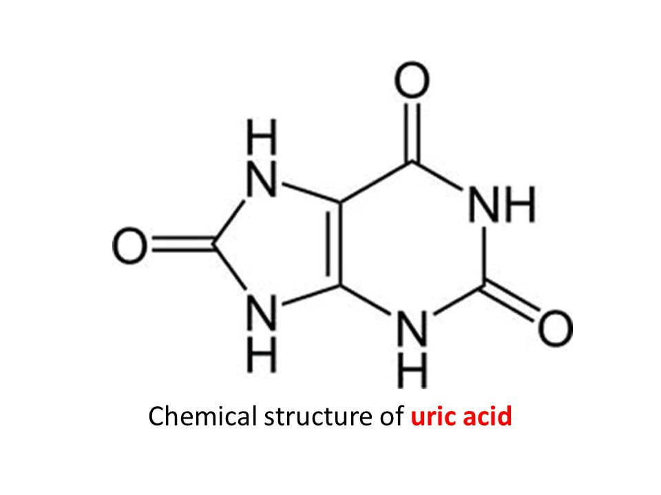Chemical structure of uric acid