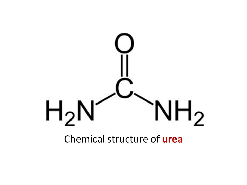 Chemical structure of urea