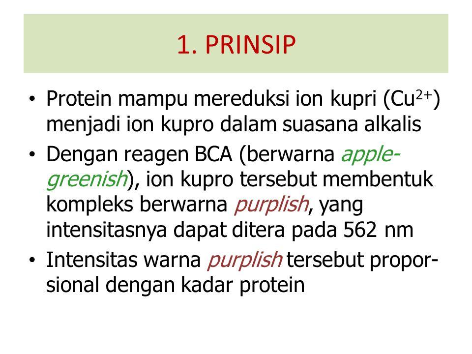 Protein mampu mereduksi ion kupri (Cu 2+ ) menjadi ion kupro dalam suasana alkalis Dengan reagen BCA (berwarna apple- greenish), ion kupro tersebut membentuk kompleks berwarna purplish, yang intensitasnya dapat ditera pada 562 nm Intensitas warna purplish tersebut propor- sional dengan kadar protein 1.