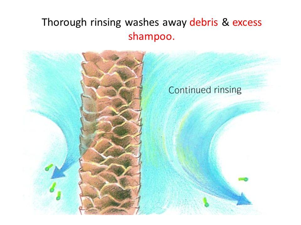Thorough rinsing washes away debris & excess shampoo.