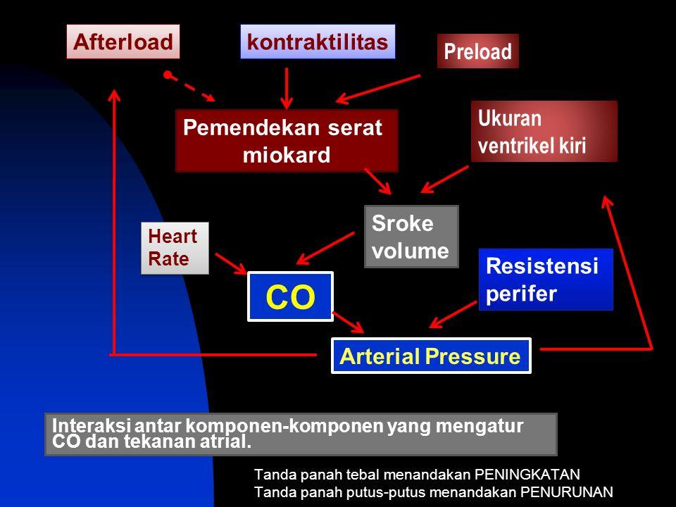 Interaksi antar komponen-komponen yang mengatur CO dan tekanan atrial.