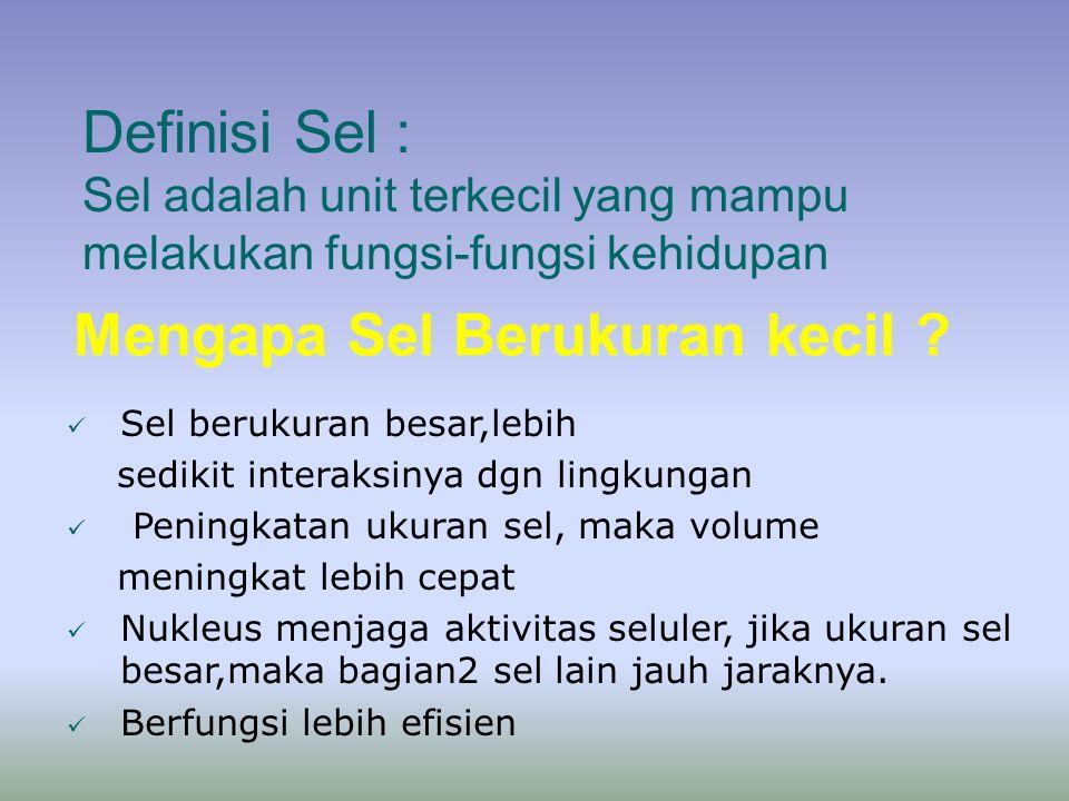 Definisi Sel : Sel adalah unit terkecil yang mampu melakukan fungsi-fungsi kehidupan Mengapa Sel Berukuran kecil .