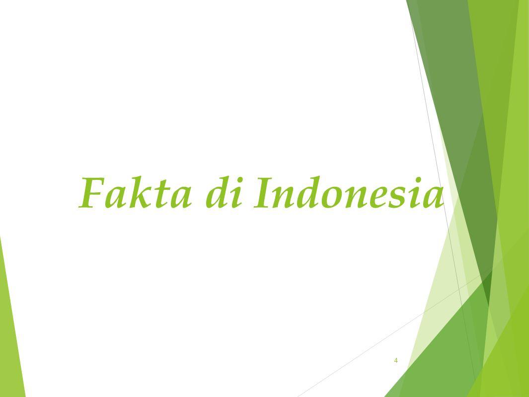 Fakta di Indonesia 4