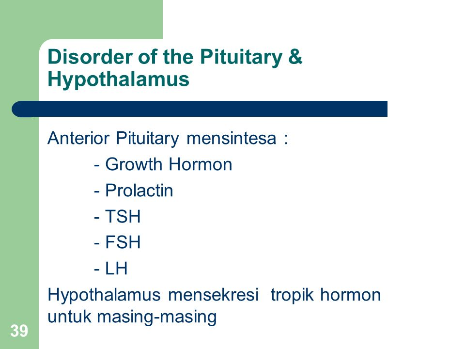 39 Disorder of the Pituitary & Hypothalamus Anterior Pituitary mensintesa : - Growth Hormon - Prolactin - TSH - FSH - LH Hypothalamus mensekresi tropik hormon untuk masing-masing