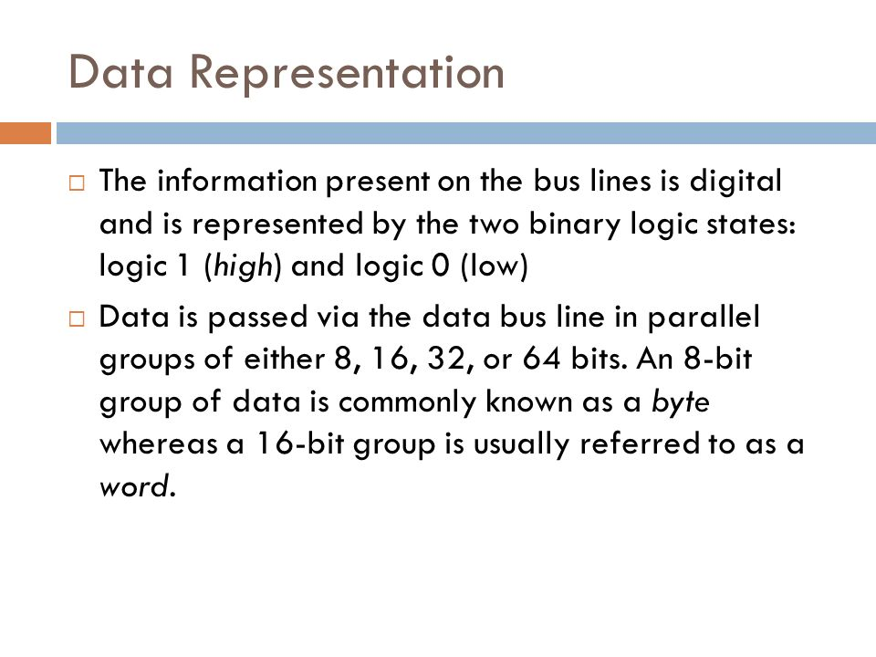 Data representation in a microcomputer system