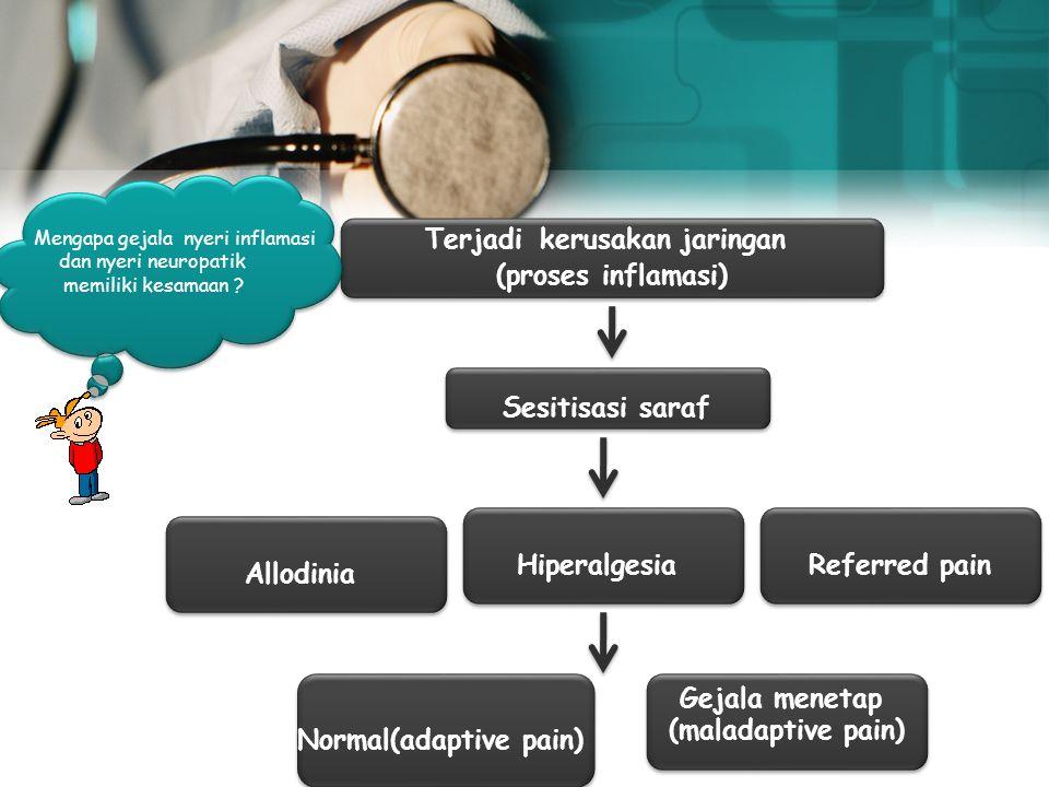 Gejala Nyeri Inflamasi Ket: nyeri secara spontan Nyeri terhadap rangsangan lemah Rangsangan noksius (nyeri hebat) Menyebaran nyeri yg lebih jauh Referred pain Hiperalgesia Allodinia Sponta pain