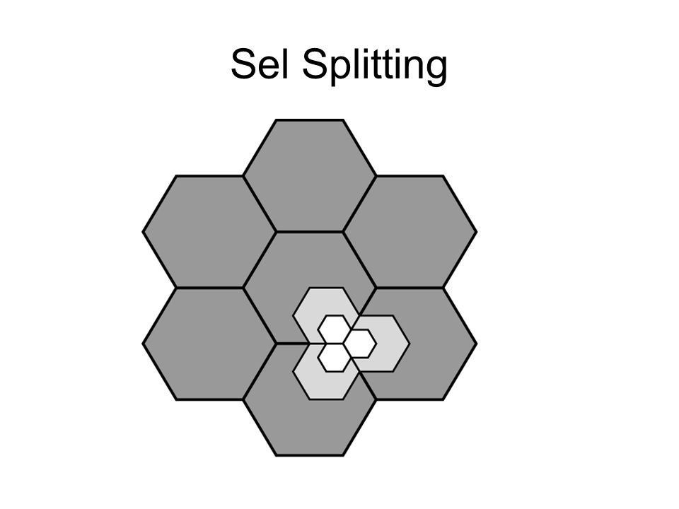 Sel Splitting