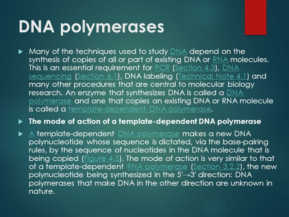 The enzymes available to the molecular biologist fall into four broad categories:  DNA polymerases (Section 4.1.1), which are enzymes that synthesize new polynucleotides complementary to an existing DNA or RNA template (Figure 4.4A); DNA polymerasesSection 4.1.1DNARNAFigure 4.4A  Nucleases (Section 4.1.2), which degrade DNA molecules by breaking the phosphodiester bonds that link one nucleotide to the next (Figure 4.4B); NucleasesSection 4.1.2DNAFigure 4.4B  Ligases (Section 4.1.3), which join DNA molecules together by synthesizing phosphodiester bonds between nucleotides at the ends of two different molecules, or at the two ends of a single molecule (Figure 4.4C); LigasesSection 4.1.3DNAFigure 4.4C  End-modification enzymes (Section 4.1.4), which make changes to the ends of DNA molecules, adding an important dimension to the design of ligation experiments, and providing one means of labeling DNA molecules with radioactive and other markers (Technical Note 4.1).