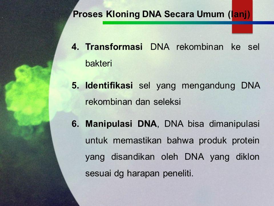 1.Isolasi & Preparasi DNA: dapat berasal dari: DNA yg sudah diklon/diperbanyak, DNA yg disisipkan, DNA yg masih jadi target, DNA asing/blm teridentifikasi, dari suatu organisme diekstrak hingga diperoleh gumpalan DNA.