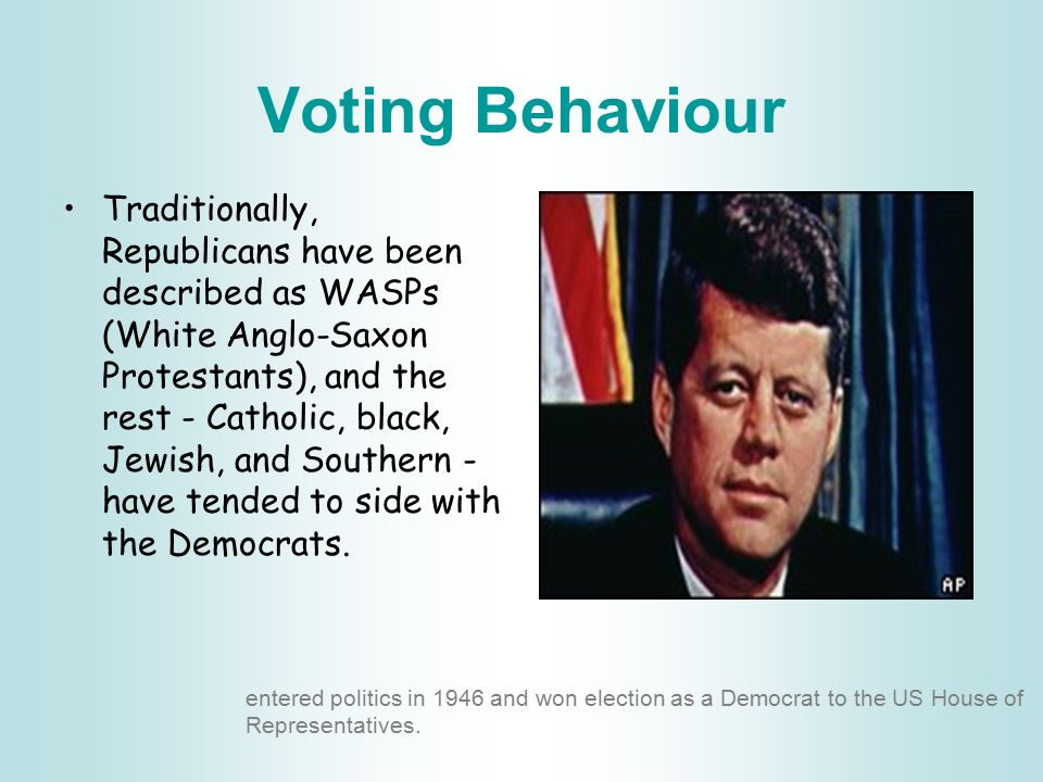 Voting Behaviour The US electorate tends to be divided by religion, ethnicity, race and region.