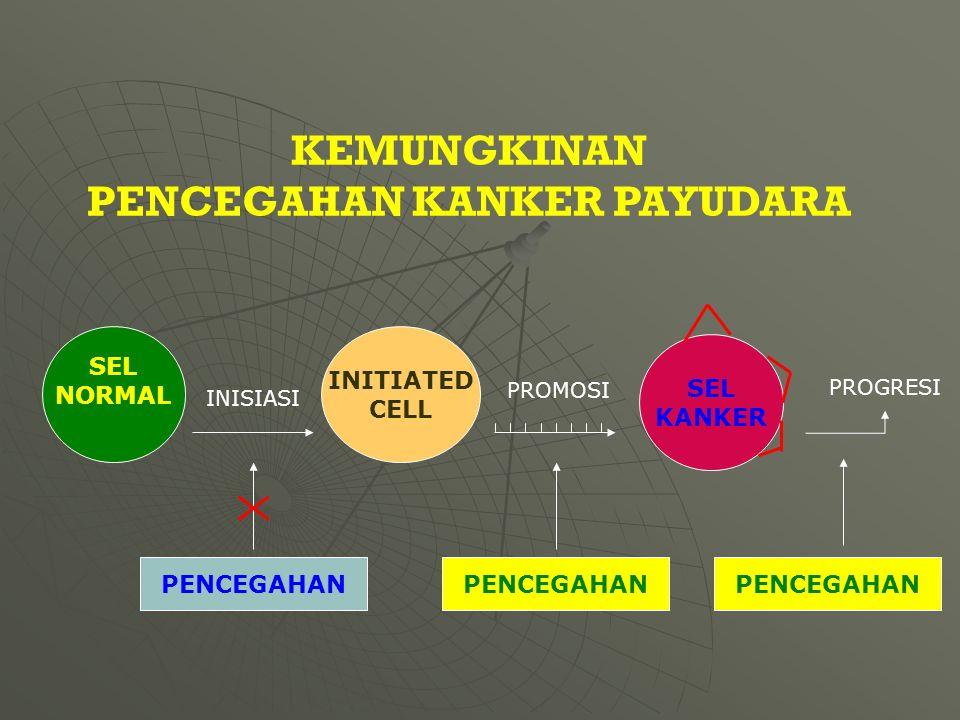 PENCEGAHAN INISIASI PROGRESI SEL NORMAL SEL KANKER INITIATED CELL PROMOSI KEMUNGKINAN PENCEGAHAN KANKER PAYUDARA PENCEGAHAN