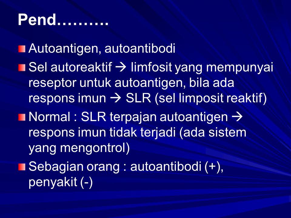 Pend………. Autoantigen, autoantibodi Sel autoreaktif  limfosit yang mempunyai reseptor untuk autoantigen, bila ada respons imun  SLR (sel limposit rea