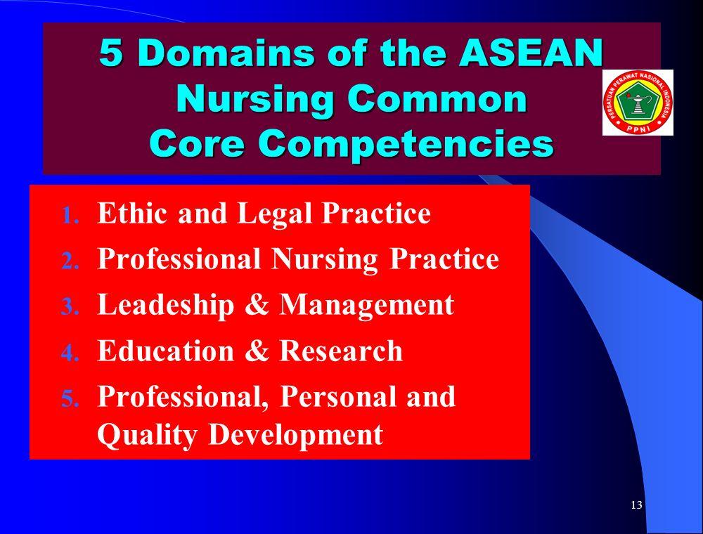 5 Domains of the ASEAN Nursing Common Core Competencies 1.