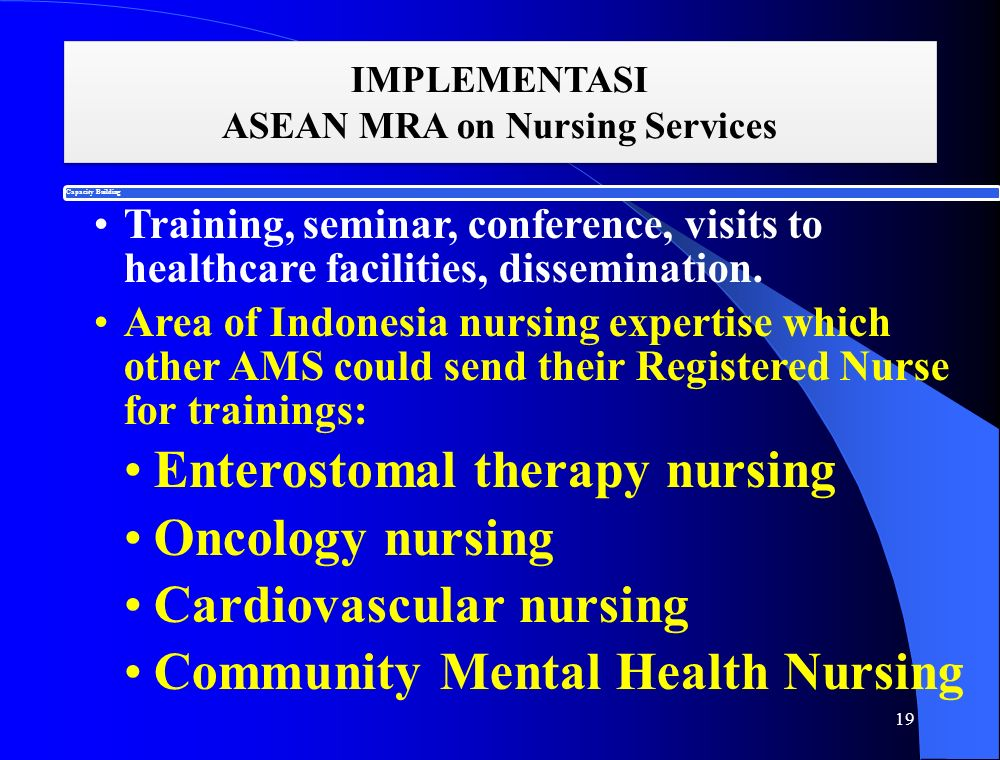 IMPLEMENTASI ASEAN MRA on Nursing Services 19