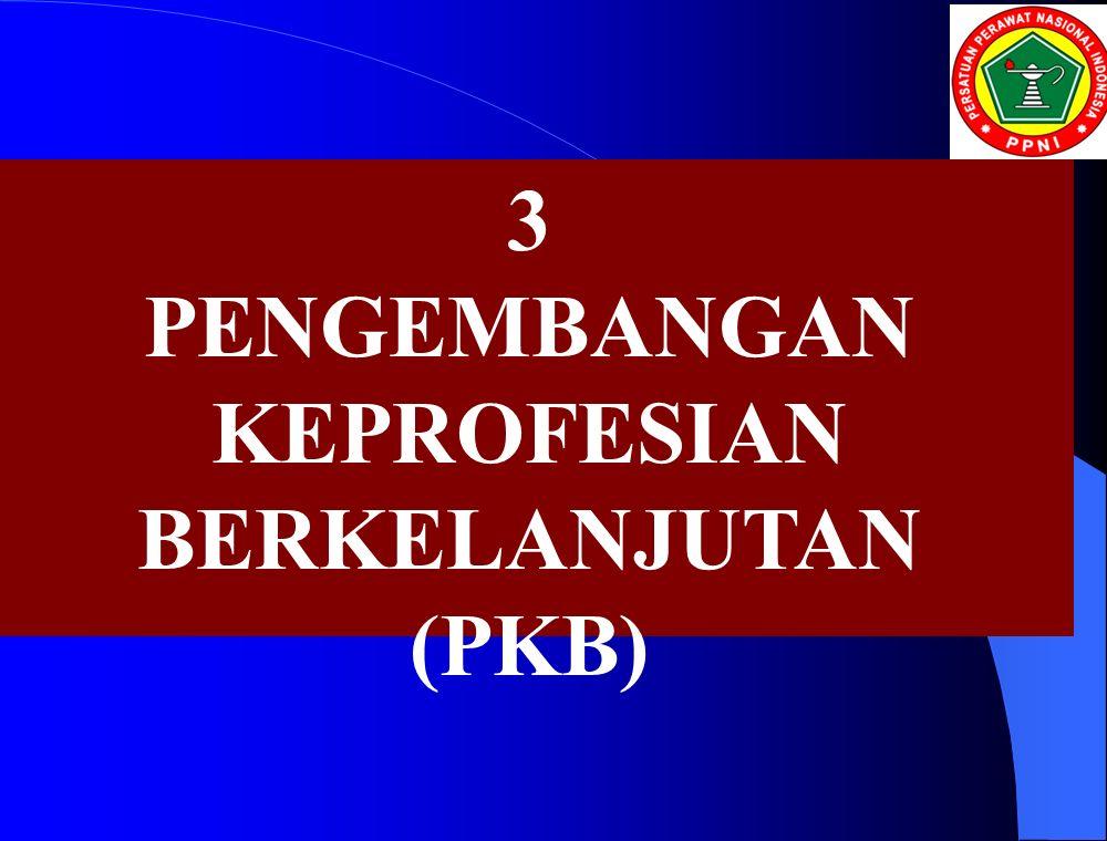 3 PENGEMBANGAN KEPROFESIAN BERKELANJUTAN (PKB)