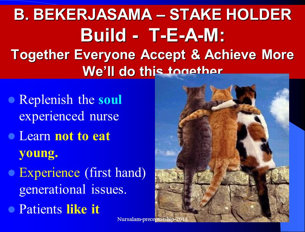98 B. BEKERJASAMA – STAKE HOLDER Build - T-E-A-M: Together Everyone Accept & Achieve More We'll do this together Replenish the soul of experienced nur