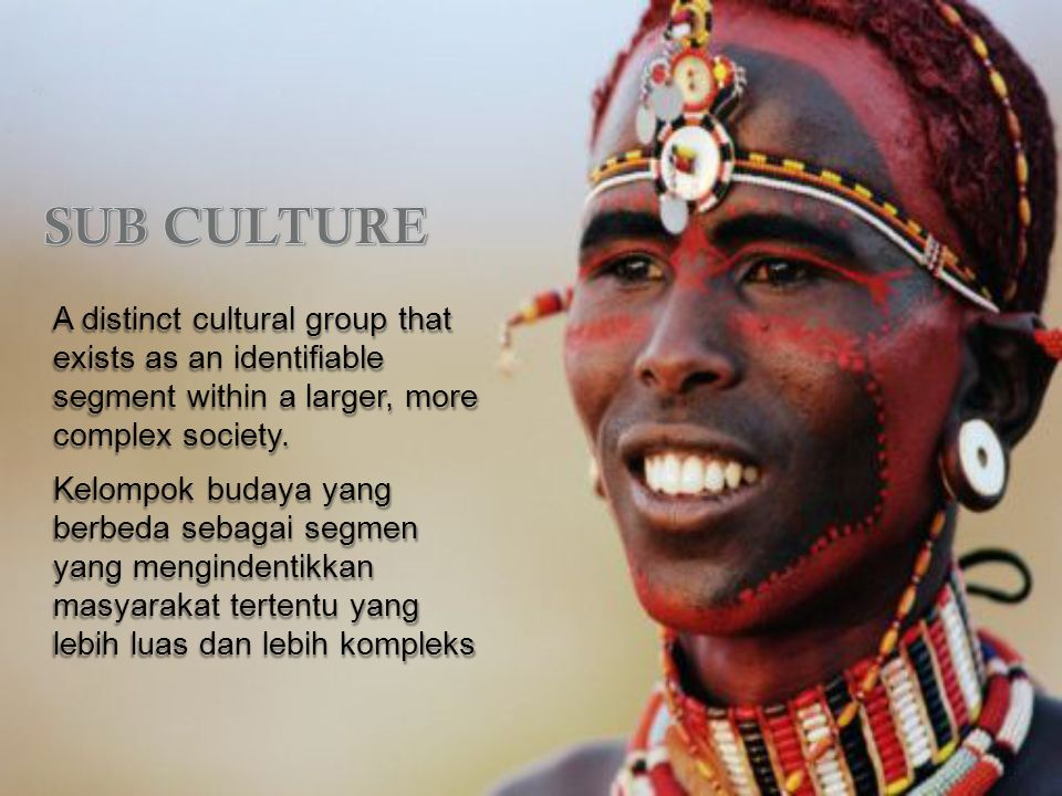 A distinct cultural group that exists as an identifiable segment within a larger, more complex society.