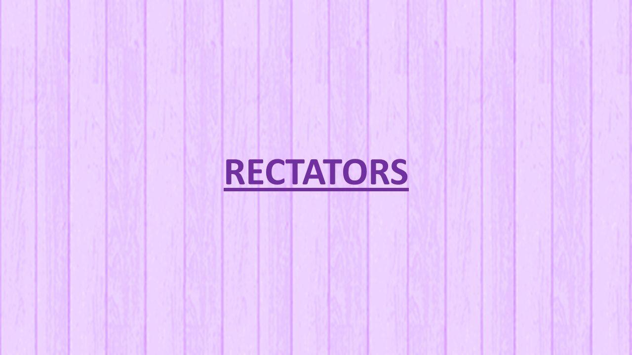 Rectators Disebut juga wondhaken.