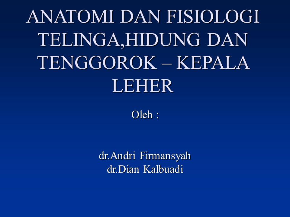 ANATOMI DAN FISIOLOGI TELINGA,HIDUNG DAN TENGGOROK – KEPALA LEHER Oleh : dr.Andri Firmansyah dr.Dian Kalbuadi