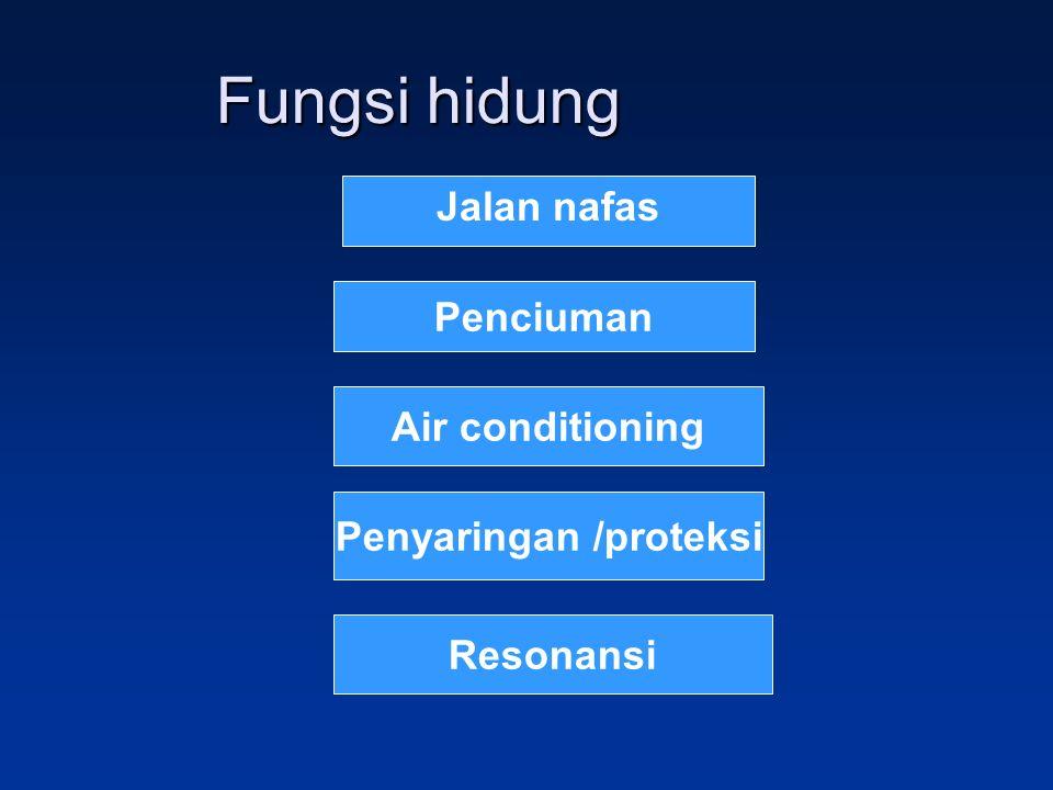 Fungsi hidung Jalan nafas Penciuman Air conditioning Penyaringan /proteksi Resonansi