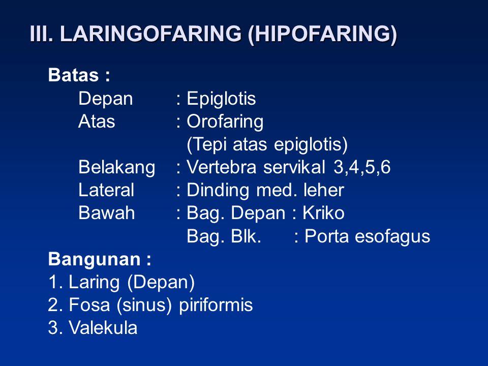 III. LARINGOFARING (HIPOFARING) Batas : Depan: Epiglotis Atas: Orofaring (Tepi atas epiglotis) Belakang: Vertebra servikal 3,4,5,6 Lateral: Dinding me