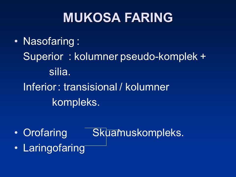 MUKOSA FARING Nasofaring : Superior : kolumner pseudo-komplek + silia. Inferior: transisional / kolumner kompleks. Orofaring Skuamuskompleks. Laringof