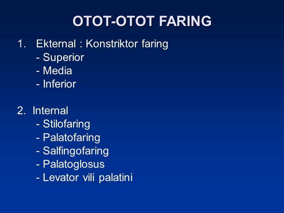 OTOT-OTOT FARING 1.Ekternal : Konstriktor faring - Superior - Media - Inferior 2. Internal - Stilofaring - Palatofaring - Salfingofaring - Palatoglosu