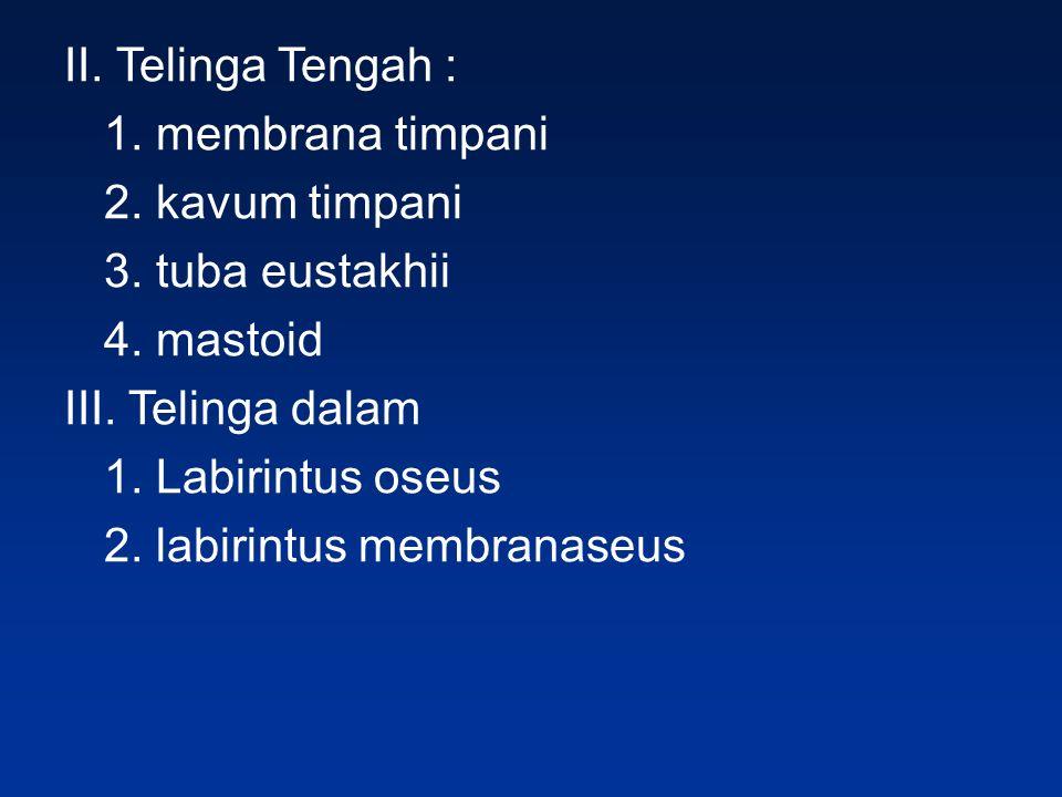 II. Telinga Tengah : 1. membrana timpani 2. kavum timpani 3. tuba eustakhii 4. mastoid III. Telinga dalam 1. Labirintus oseus 2. labirintus membranase