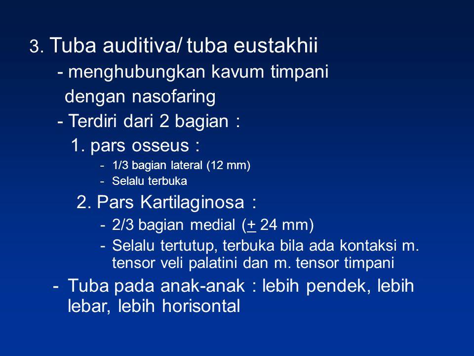 3. Tuba auditiva/ tuba eustakhii - menghubungkan kavum timpani dengan nasofaring - Terdiri dari 2 bagian : 1. pars osseus : -1/3 bagian lateral (12 mm