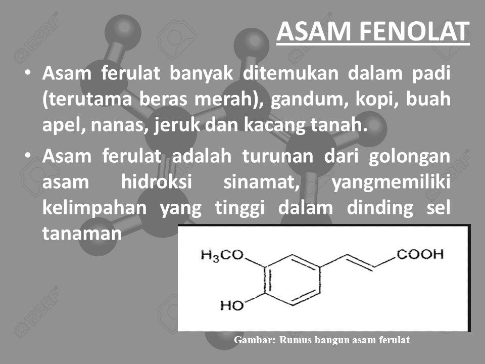 ASAM FENOLAT Asam ferulat banyak ditemukan dalam padi (terutama beras merah), gandum, kopi, buah apel, nanas, jeruk dan kacang tanah.