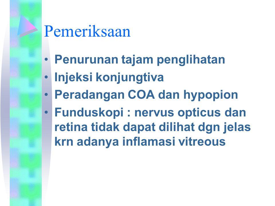 Pemeriksaan Penurunan tajam penglihatan Injeksi konjungtiva Peradangan COA dan hypopion Funduskopi : nervus opticus dan retina tidak dapat dilihat dgn jelas krn adanya inflamasi vitreous
