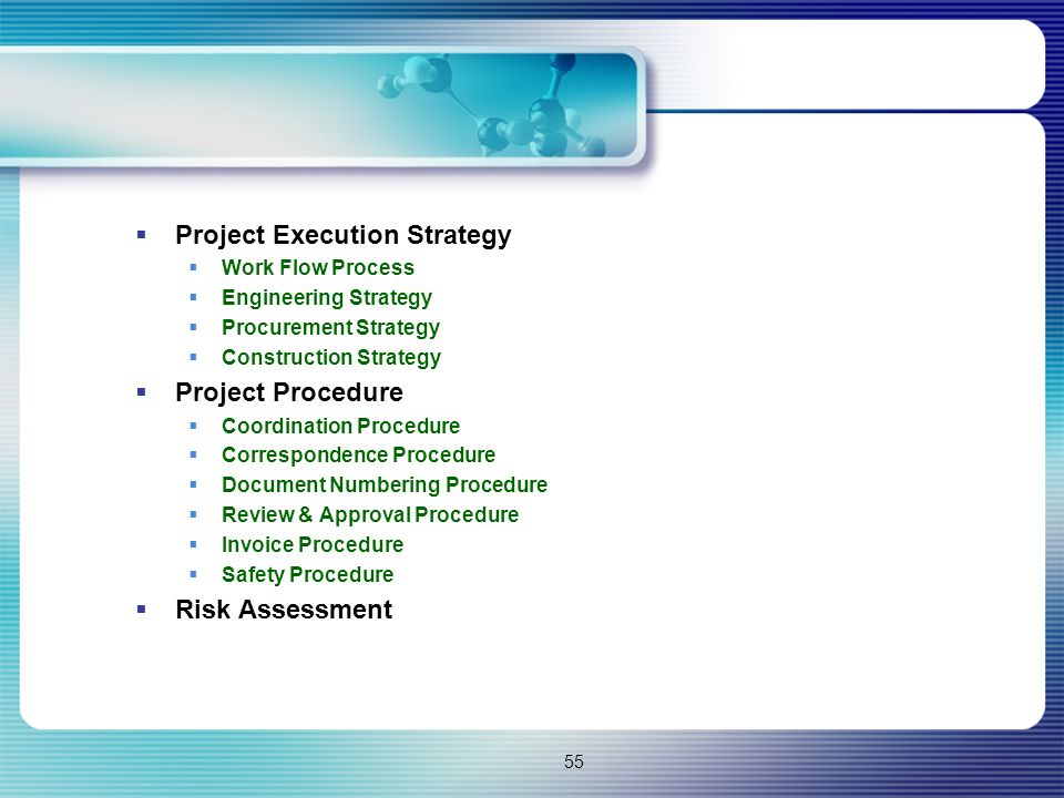 55  Project Execution Strategy  Work Flow Process  Engineering Strategy  Procurement Strategy  Construction Strategy  Project Procedure  Coordi