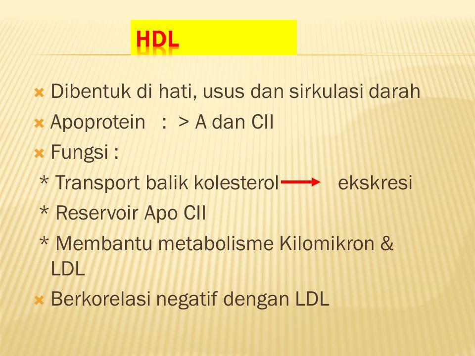  Dibentuk di hati, usus dan sirkulasi darah  Apoprotein : > A dan CII  Fungsi : * Transport balik kolesterol ekskresi * Reservoir Apo CII * Membantu metabolisme Kilomikron & LDL  Berkorelasi negatif dengan LDL