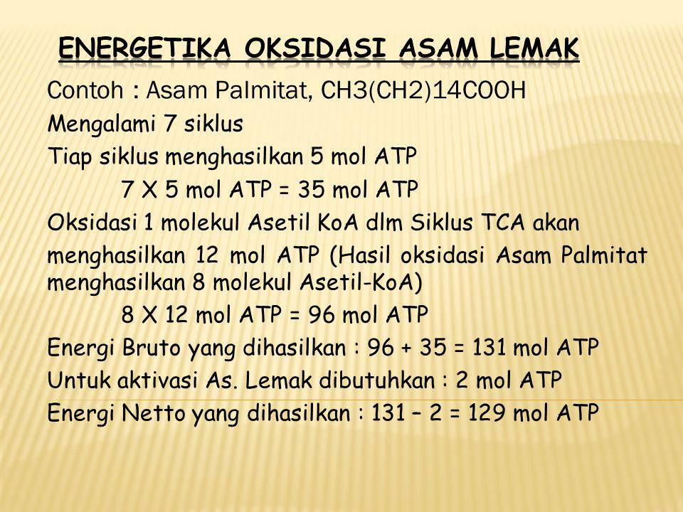 Contoh : Asam Palmitat, CH3(CH2)14COOH Mengalami 7 siklus Tiap siklus menghasilkan 5 mol ATP 7 X 5 mol ATP = 35 mol ATP Oksidasi 1 molekul Asetil KoA dlm Siklus TCA akan menghasilkan 12 mol ATP (Hasil oksidasi Asam Palmitat menghasilkan 8 molekul Asetil-KoA) 8 X 12 mol ATP = 96 mol ATP Energi Bruto yang dihasilkan : 96 + 35 = 131 mol ATP Untuk aktivasi As.