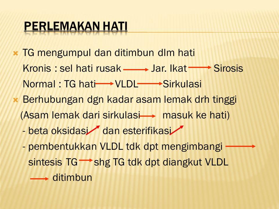  TG mengumpul dan ditimbun dlm hati Kronis : sel hati rusak Jar. Ikat Sirosis Normal : TG hati VLDL Sirkulasi  Berhubungan dgn kadar asam lemak drh