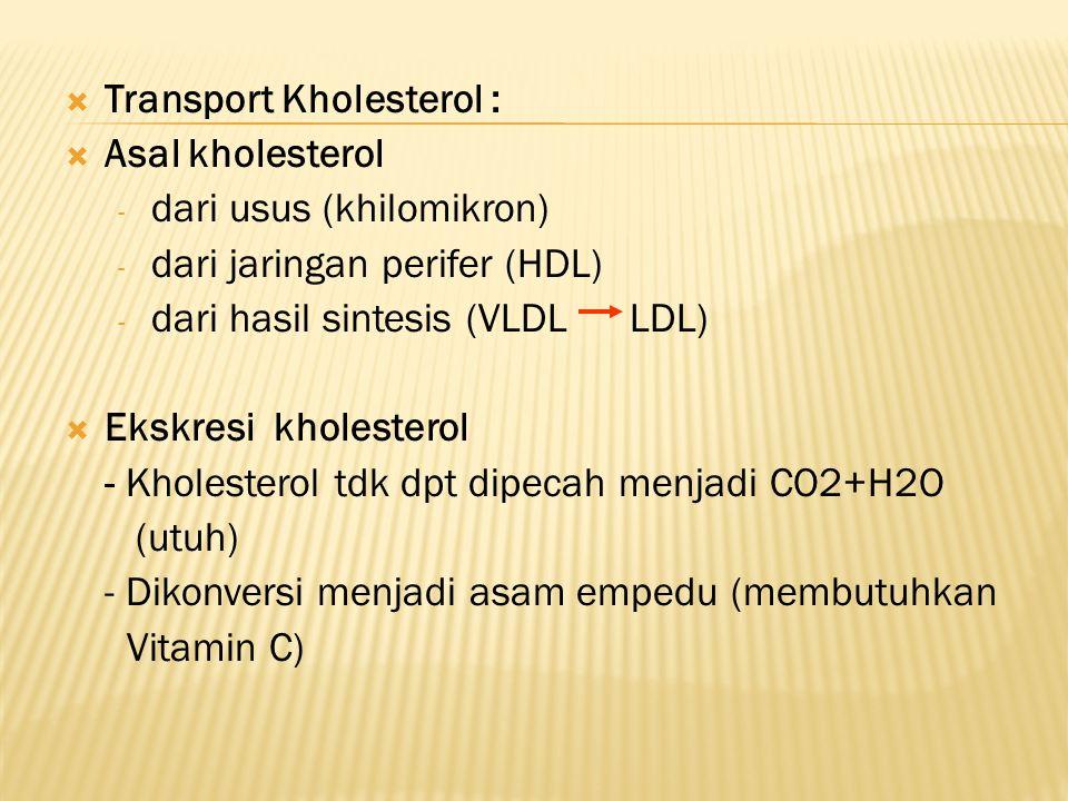  Transport Kholesterol :  Asal kholesterol - dari usus (khilomikron) - dari jaringan perifer (HDL) - dari hasil sintesis (VLDL LDL)  Ekskresi kholesterol - Kholesterol tdk dpt dipecah menjadi CO2+H2O (utuh) - Dikonversi menjadi asam empedu (membutuhkan Vitamin C)
