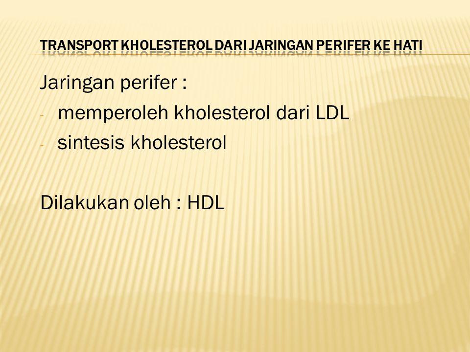 Jaringan perifer : - memperoleh kholesterol dari LDL - sintesis kholesterol Dilakukan oleh : HDL
